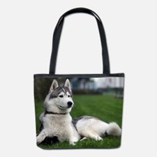 Malamute Dog Alaska US Bucket Bag
