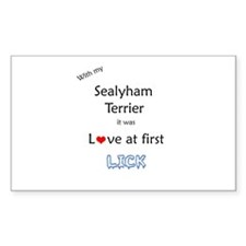 Sealy Lick Rectangle Decal