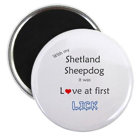 Sheltie Lick Magnet