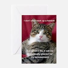 Cat Meme Greeting Cards