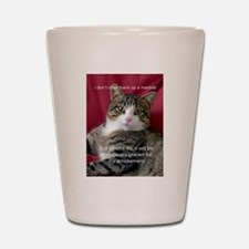 Cat Meme Shot Glass