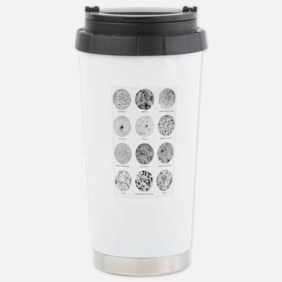 Bacterial Identif Travel Mug
