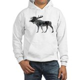 Animal pictures Hooded Sweatshirt