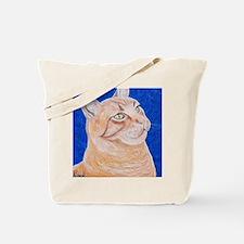 Acrylics Tote Bag