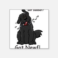 "Funny Newfie Square Sticker 3"" x 3"""