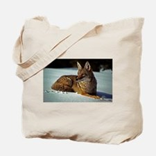 Coyote relaxing in the snow Tote Bag