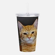 Funny Feline Acrylic Double-wall Tumbler