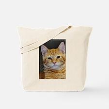 Unique Tabbies Tote Bag
