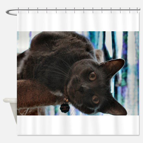 Funny Russian blue cat Shower Curtain