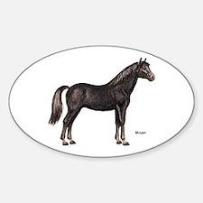 Morgan Horse Oval Decal