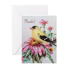 Goldfinch on Coneflowers Greeting Cards
