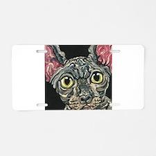 Sphynx Hairless Cat Aluminum License Plate