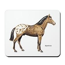 Appaloosa Horse Mousepad