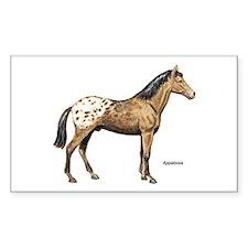 Appaloosa Horse Rectangle Decal