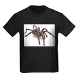 Spider Kids T-shirts (Dark)