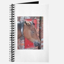 The Daily Donkey Journal 32