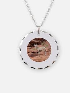 Unique Canyonlands Necklace