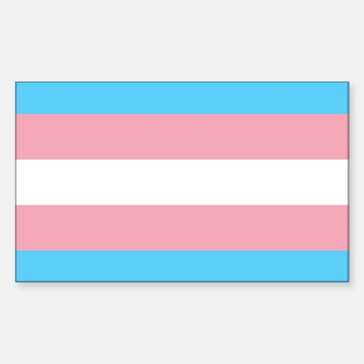 Cute Transgender ftm Sticker (Rectangle)