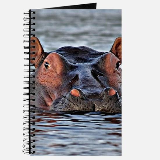 Hippo Journal