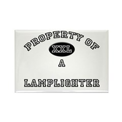 Property of a Lamplighter Rectangle Magnet