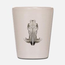 Hog skull Shot Glass