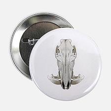 """Hog skull 2.25"""" Button"""