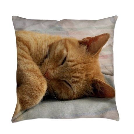 Sweet Dreams Everyday Pillow by FrankieCat