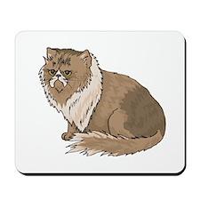 Pretty Himalayan Cat Mousepad