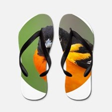 Baltimore Oriole Flip Flops