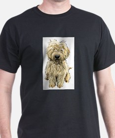 Funny Goldendoodle dog breed T-Shirt