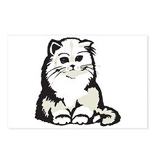 Cute White Persian Kitten Postcards (Package of 8)