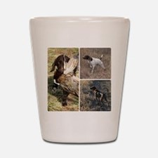 Cute German shorthair Shot Glass