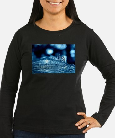 Ice Forest Long Sleeve T-Shirt