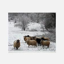 Winter Sheep Throw Blanket