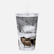 Winter Sheep Acrylic Double-wall Tumbler