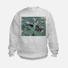 Black Cat in Christmas Tree Sweatshirt