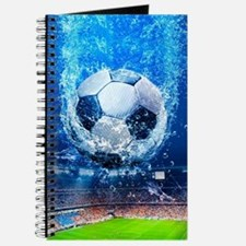 Ball Splash Over Stadium Journal