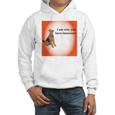 Airedales: Why you have insuranc Hoodie