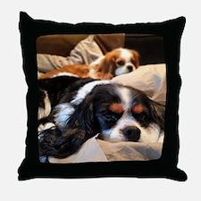 Cute King charles cavalier Throw Pillow