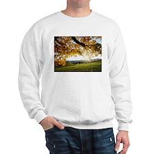 Autumn Leaves Items Sweatshirt