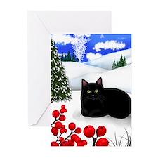 Unique Winter designs Greeting Cards (Pk of 20)