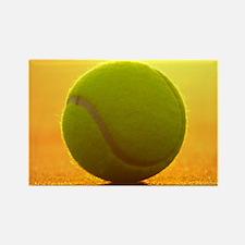 Tennis Ball Magnets