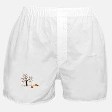 Fall Pumpkins Boxer Shorts
