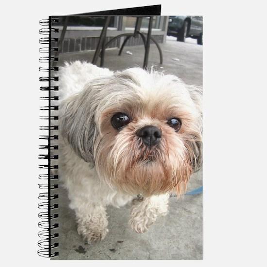 Cute Shih tzu Journal