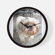 small dog at cafe Wall Clock