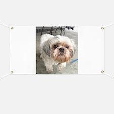 small dog at cafe Banner