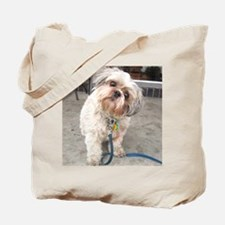 Cute Lhasa apsos Tote Bag