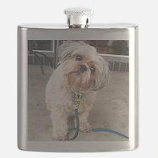 Unique Shih tzu Flask
