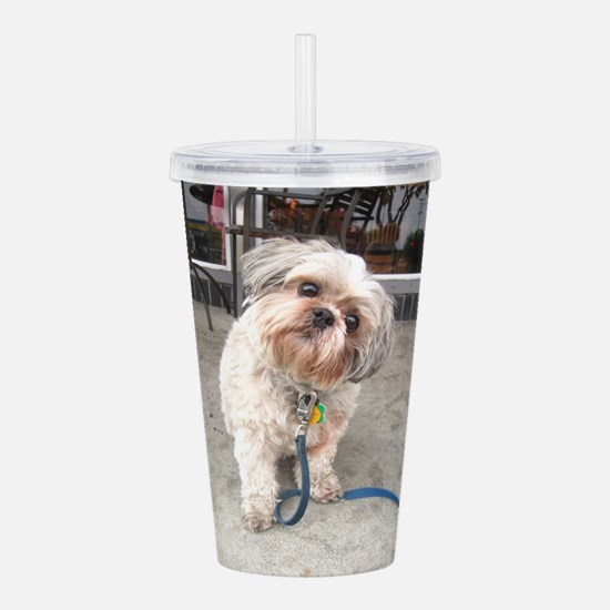 dog on leash at cafe Acrylic Double-wall Tumbler