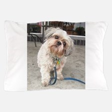 dog on leash at cafe Pillow Case